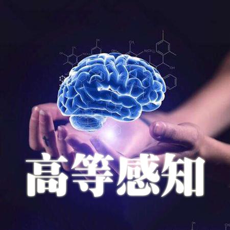 右脑开发——HSP高等感知训练